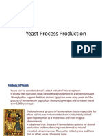 Yeast Process Production