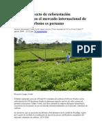 Primer proyecto de reforestación reconocido en el mercado internacional de bonos de carbono es peruano