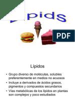 acidos_grasos_2011