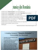 Grădinile botanice din Romania(Andrieş Gabriel,Geografie 1121 A)