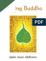Seeking Budho LOW