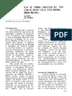 POZOS DE ACUMULACIÓN DE NIEVE EN EL PICO MAROMA 2065M SIERRA TEJEDA ( GRANADA-MÁLAGA)