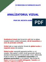 Fiz A1S2 C13 Analizatorul Vizual
