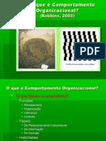 O_que_e_Comportamento_Organizacional_-_Robbins[1]