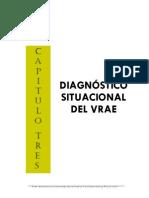 PDC_VRAE-capIII