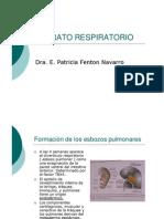 13-APARATO_RESPIRATORIO