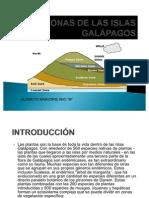 7 ZONAS DE LAS ISLAS GALÁPAGOS