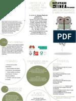 Diplomado en línea Libros Informativos