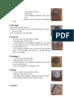 descriere prajituri