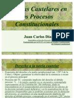 15041022 Medidas Cautelares en Los Procesos Constitucionales