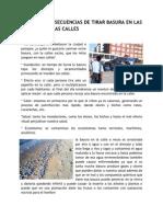 Causas y Consecuencias de Tirar Basura en Las Playas y en Las Calles