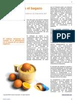 Alcenit Insights - Fortaleciendo la industria del software