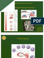 Embriologia Sistema Nervoso