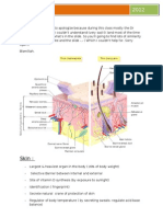Lecture Note Integumentary System