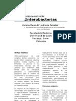 In. Enterobacterias2fin