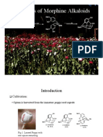 Synthesis of Morphine Alkaloids