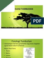 9. fistum & fotosintesis