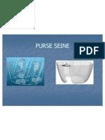 4 Purse Seine