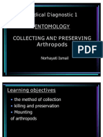 Collecting and Preserving Arthropods