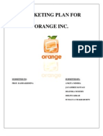 Marketing Plan for Orange Inc 1