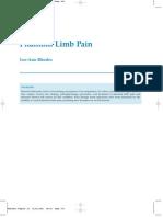 Lee-Ann Rhodes- Phantom Limb Pain