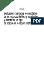 Evaluacion Cualitativa y Cuantitativa de Recursos de Flora y Vegetacion Forestal de Un Tipo de Bosque en Loreto Peru