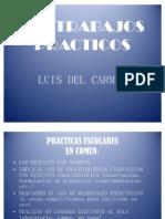 Trabajos Practicos Luis Del Carmen