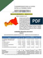 Reporte 9 - 2010 - Ejecucion Presupuestal Region Pasco Enero Diciembre 2010