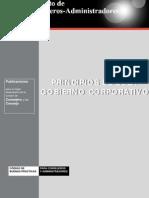 Principios_esp Gobierno Corporativo
