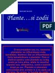 plante_si_zodii