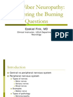 Fink Small Fiber Neuropathy