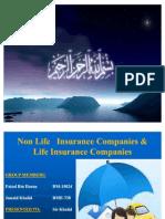 Non Life Insurance Companies & Life Insurance Companies