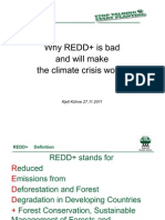 Why REDD+ is bad and will make the climate crisis worse