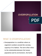 Overpopulation essay?
