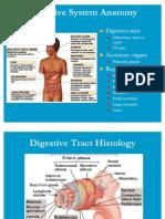 Ana Physio Digestive System