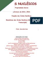 01 - Aula Sobre Acidos Nucleicos