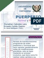 Puerperio Normal y Patologico 119802309093860 5