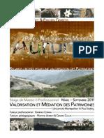 Mémoire de fin de Master professionnel Valorisation et Médiation des Patrimoines - S. Chauvet & E. Gerbois
