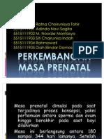 an Masa Prenatal