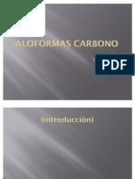 ALOFORMAS CARBONO