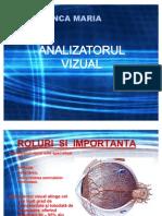 Analizatorul Vizual - Curs an II, Fac. Medicina (Umana)
