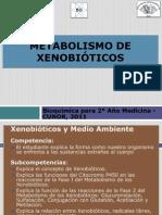 1 METABOLISMO DE XENOBIÓTICOS