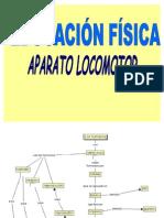 EFI3MUNI3N2PENPRESENTACION_DE_ANATOMIA