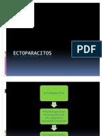 ECTOPARACITOS