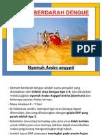 Materi Lembar Balik DBD (Demam Berdarah Dengue)