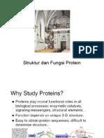 Struktur Dan Fungsi Protein
