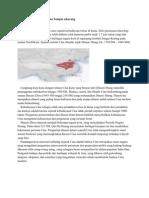 Sejarah Dinasti China Kuno Sampai