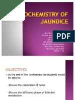 Biochemistry of Jaundice 03 (1)