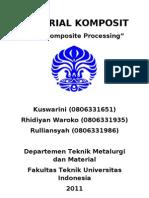 Nanocomposite Processing