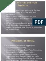 Marketing of Hpmc